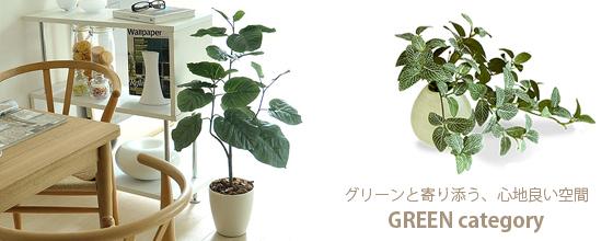 グリーンと寄り添う、心地良い空間。