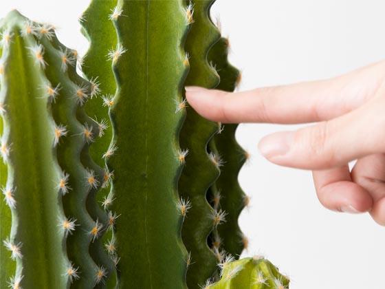 光触媒人工植物