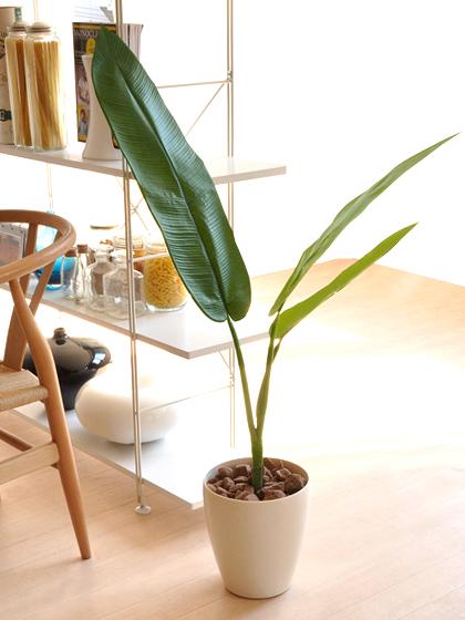 光触媒 人工観葉植物 トラベラーズパーム グリーン