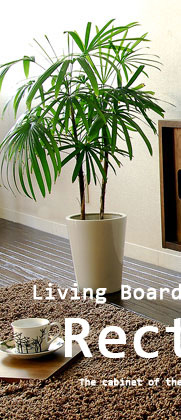 Living Board Rectangle