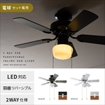 2 WAY USE TRADITIONAL CELING FAN LIGHT