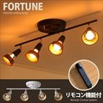 Fortune ceiling lanp