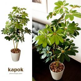 光触媒人工植物 Kapok 〔カポック〕 グリーン
