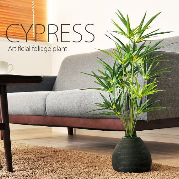 光触媒 人工観葉植物 サイプレス グリーン